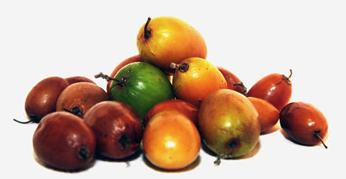 jujube and red dates