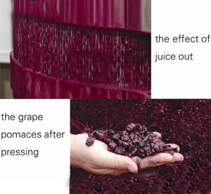 THE effect of juice out